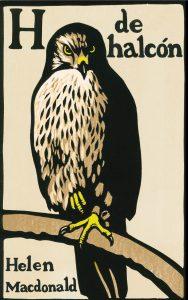 'H de halcón'